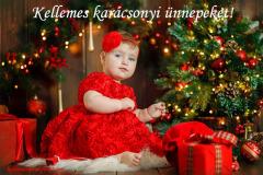 kellemes karácsonyi ünnepeket fa gyerek