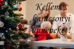 kellemes karácsonyi ünnepeket fenyő család