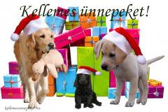 kellemes ünnepeket kutya ajándék