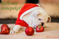 kellemes ünnepeket kutya dísz