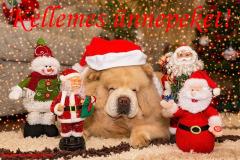 kellemes ünnepeket kutya mikulás