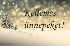 kellemes ünnepeket téli fenyő