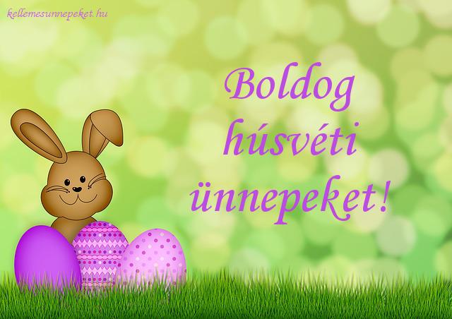 boldog húsvéti ünnepeket nyuszi
