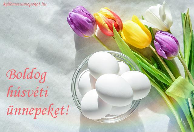 boldog húsvéti ünnepeket tulipánok