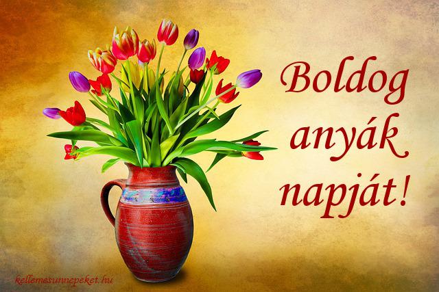boldog anyák napját tulipánok