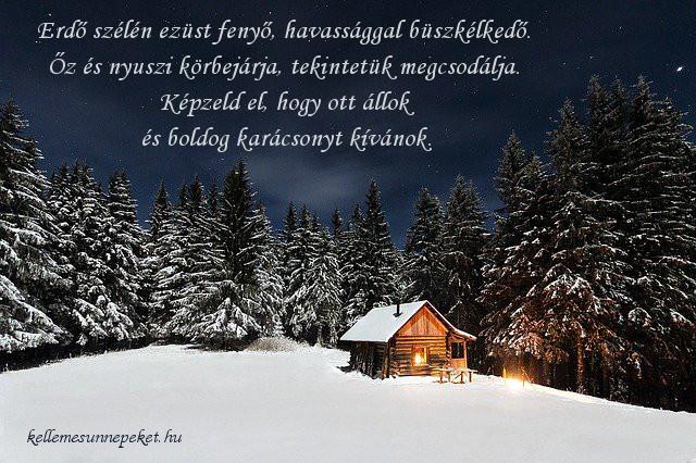 boldog karácsonyt idézet, erdő szélén