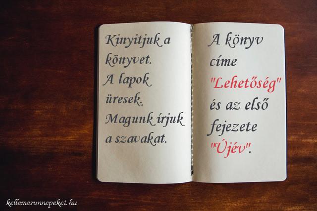 """újév idézet, A könyv címe """"Lehetőség"""" és az első fejezete """" Újév""""."""