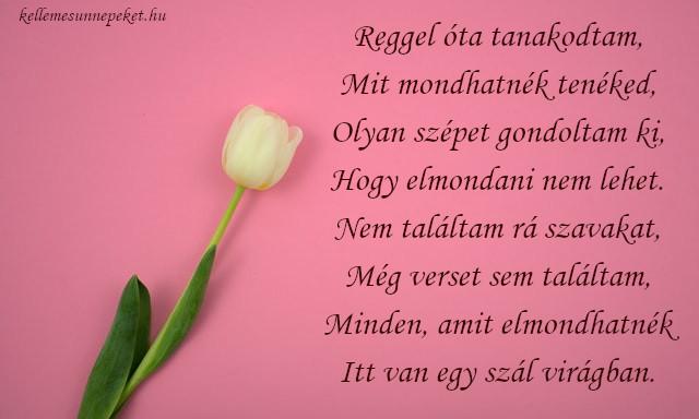 anyák napi vers nagymamának, tulipán